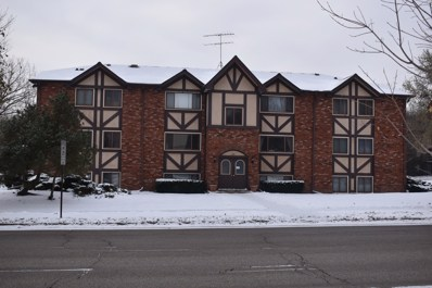 319 DUNNING Avenue UNIT 1C, West Dundee, IL 60118 - #: 10548207