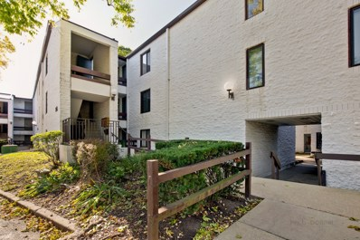 342 W Miner Street UNIT 1A, Arlington Heights, IL 60005 - #: 10548685
