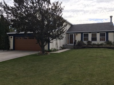 20251 S Rosewood Court, Frankfort, IL 60423 - #: 10548868