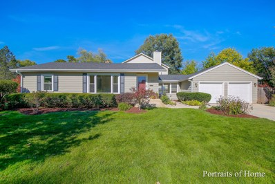 803 E Harrison Avenue E, Wheaton, IL 60187 - #: 10548896