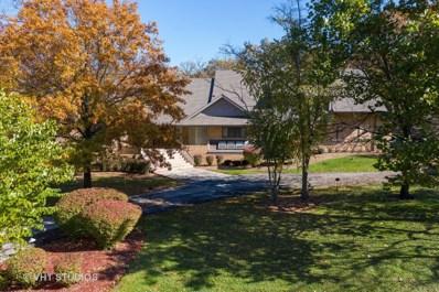 3 Black Walnut Trail, Palos Park, IL 60464 - #: 10549025