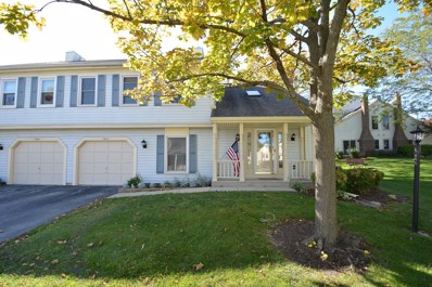 2685 College Hill Circle, Schaumburg, IL 60173 - #: 10549402