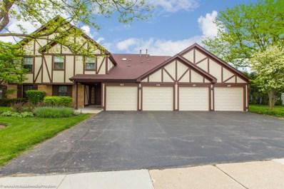 351 N ELIZABETH Drive UNIT 351, Wood Dale, IL 60191 - #: 10549588