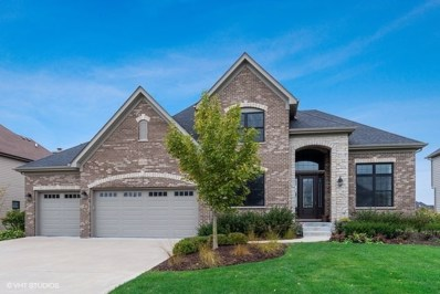 4120 Chinaberry Lane, Naperville, IL 60564 - #: 10552489