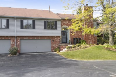 17833 Cameron Parkway, Orland Park, IL 60467 - #: 10552493