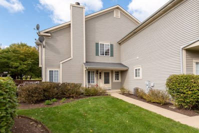 340 Windsor Court UNIT B, South Elgin, IL 60177 - #: 10553098