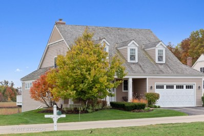 1249 Redtail Circle, Woodstock, IL 60098 - #: 10553133