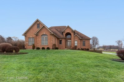 6513 Sweet Bay Drive, McHenry, IL 60050 - #: 10553176