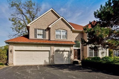 21 River Oaks Circle E, Buffalo Grove, IL 60089 - #: 10553690