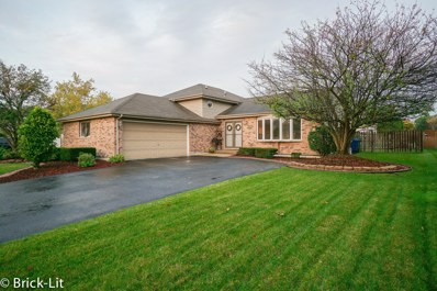 672 Bishops Gate, New Lenox, IL 60451 - #: 10554257