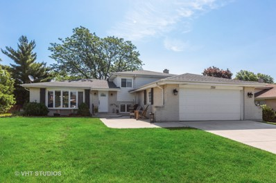 7701 Blackberry Lane, Willowbrook, IL 60527 - #: 10557029
