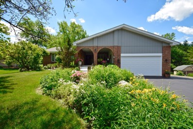 21W531  Eagle, Medinah, IL 60157 - #: 10557526