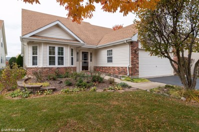 13424 Tall Pines Lane, Plainfield, IL 60544 - #: 10557624