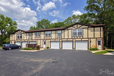 420 St Johns Road UNIT B, Woodstock, IL 60098 - #: 10558290