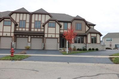 12713 Wild Rye Court UNIT C, Plainfield, IL 60585 - #: 10559128