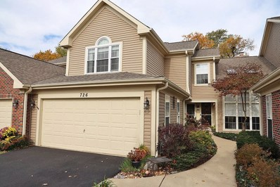 726 Clover Hill Court, Elk Grove Village, IL 60007 - #: 10559138