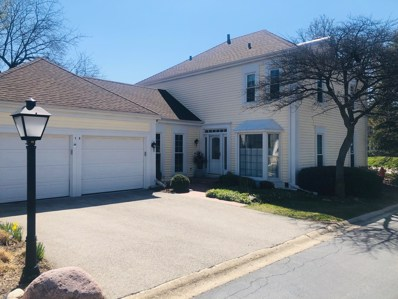 13 The Court Of Lagoon View Court, Northbrook, IL 60062 - #: 10559832