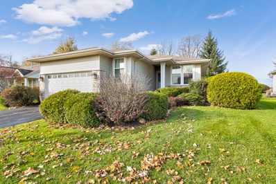 11355 Stonewater Crossing, Huntley, IL 60142 - #: 10560177