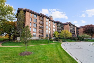 3801 Mission Hills Road UNIT 211, Northbrook, IL 60062 - #: 10560955