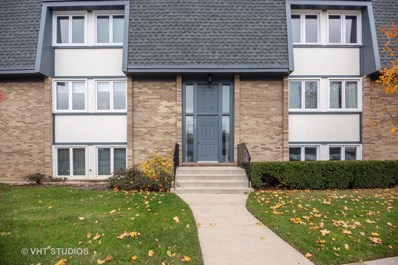 2031 Ammer Ridge Court UNIT 302, Glenview, IL 60025 - #: 10563270