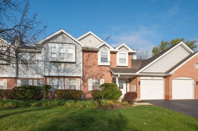 887 Quin Court UNIT 101, Naperville, IL 60563 - #: 10563483