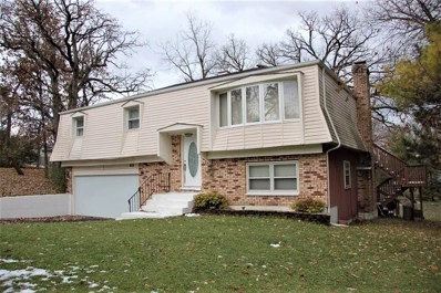 206 Indian Trail, Lake In The Hills, IL 60156 - #: 10565084