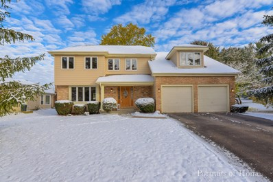 1009 Canyon Run Road, Naperville, IL 60565 - #: 10566336