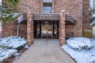 925 Spring Hill Drive UNIT 207, Northbrook, IL 60062 - #: 10566419