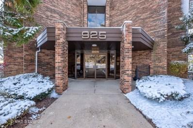 925 Spring Hill Drive UNIT 207, Northbrook, IL 60062 - #: 10566419