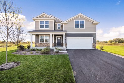 25438 W Ryan Lane, Plainfield, IL 60586 - #: 10566749