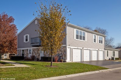 1031 Brunswick Harbor UNIT 1031, Schaumburg, IL 60193 - #: 10566934