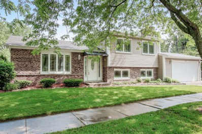300 Illinois Street, Glen Ellyn, IL 60137 - #: 10567009