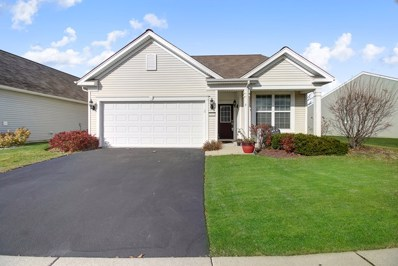 13341 Canary Lane, Huntley, IL 60142 - #: 10567418