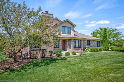 10473 Brookridge Creek Drive, Frankfort, IL 60423 - #: 10567609