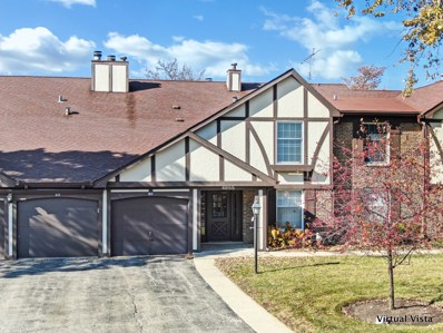 4955 Kimball Hill Drive UNIT B2, Rolling Meadows, IL 60008 - #: 10567744