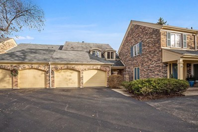 26 The Court of Island, Northbrook, IL 60062 - #: 10568070