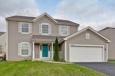 2020 Burr Oak Court, Round Lake, IL 60073 - #: 10568321