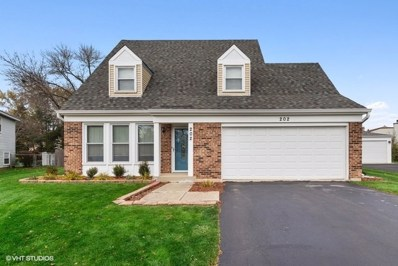 202 Court Of Ash, Vernon Hills, IL 60061 - #: 10568920