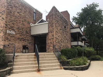 1806 Hemlock Place UNIT 211, Schaumburg, IL 60173 - #: 10569651