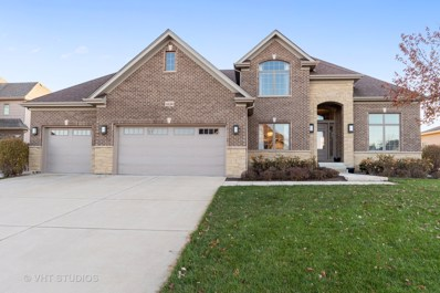 4336 Winterberry Avenue, Naperville, IL 60564 - #: 10569694