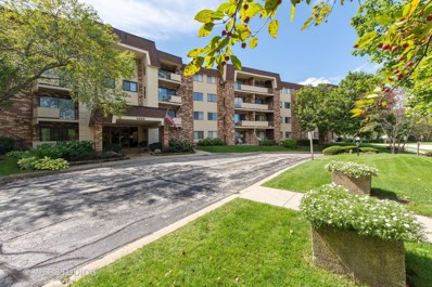 3350 N Carriageway Drive UNIT 314, Arlington Heights, IL 60004 - #: 10571670