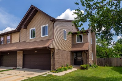 537 Commanche Trail UNIT 0, Wheeling, IL 60090 - #: 10572836