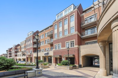 50 N Northwest Highway UNIT 206, Park Ridge, IL 60068 - #: 10575105