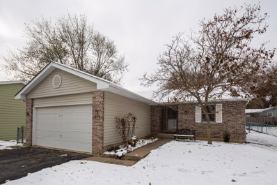 611 S Orchid Path, McHenry, IL 60050 - #: 10575681