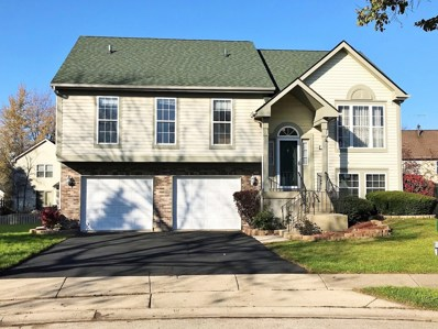 1116 Apple Hill Court, Elgin, IL 60120 - #: 10576267