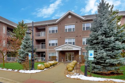 10 N Gilbert Street UNIT 115, South Elgin, IL 60177 - #: 10576863