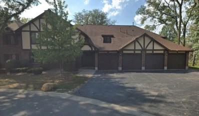8254 Chestnut Drive UNIT 41D, Palos Hills, IL 60465 - #: 10576871