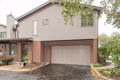 50 S Dee Road UNIT B, Park Ridge, IL 60068 - #: 10578320