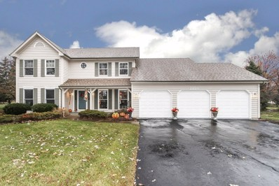 23764 DEER CHASE Lane, Naperville, IL 60564 - #: 10578483