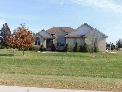 5685 S Indian Trail, Rochelle, IL 61068 - #: 10579131